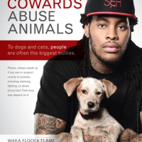 Waka Flocka Flame Thinks Michael Vick Is A Coward?