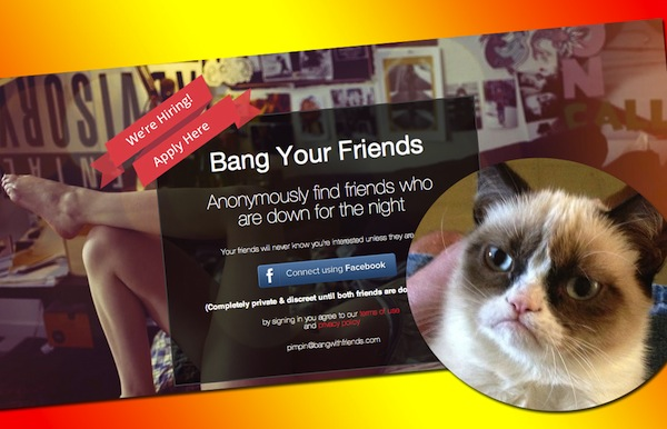 bang with friends grumpy cat