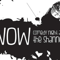 See Me at WOW Comedy Night at The Shannon on January 17th!