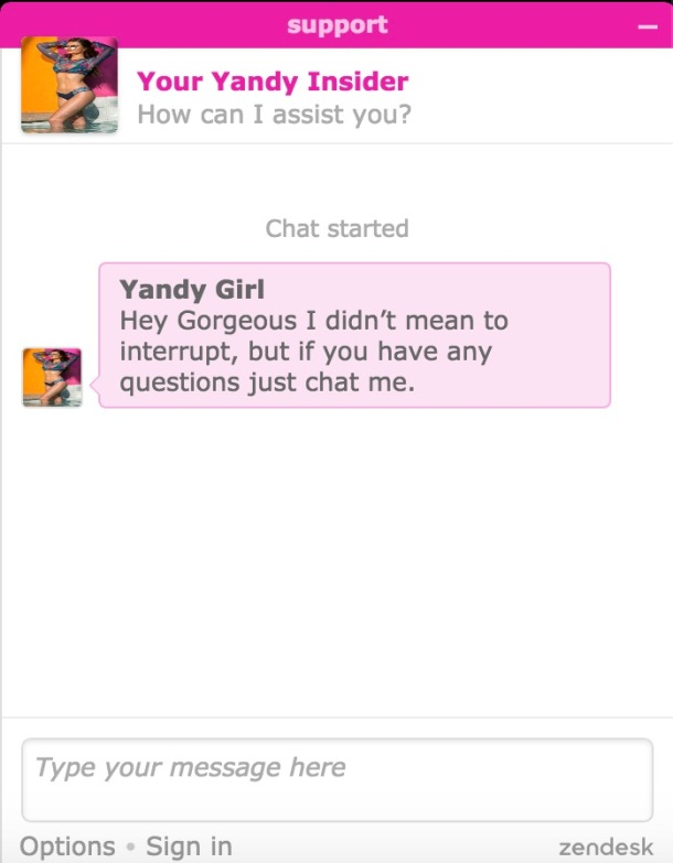 Yandy Chat Support